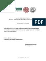Barbara Dallara - La componente fitoplanctonica nell'ambito del programma di studio e monitoraggio integrato dell'ambiente marino costiero della regione veneto