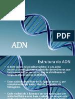 ADN - Power Point