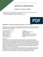 Relazione Di Laboratorio Sulla Cinetica Chimica