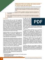 Respuesta a la fertilización NS en el cultivo de colza-canola en el centro-este de Entre Ríos