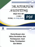 Ttm- 5 (Pemeriksaan Atas Asset, Pendapatan Dan Beban)
