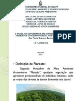 APRESENTAÇÃO 5 - FLORESTAS