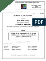 Mémoire Finale 2017.pdf