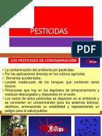 PESTICIDAS_D-19.pptx