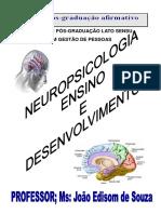 NEUROPSICOLOGIA,%20ENSINO%20E%20DESENVOLVIMENTO%20-%20Prof.%20Joao%20Edisom.pdf