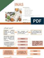 proteinas exposicion.pptx
