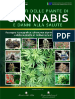 Manuale Iconografico Cannabis