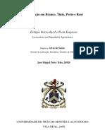 Relatório Empresa I e II JMT
