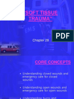 1soft Tissue Trauma