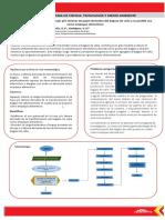 Análisis microbiológico de hojas y/o láminas de papel derivadas del bagazo de caña y su posible uso como empaque alimenticio