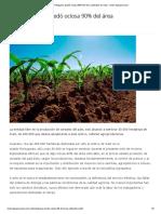 En Portuguesa Quedó Ociosa 90% Del Área Cultivable de Maíz - Visión Agropecuaria