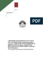 identifikasi bakteri batang gram negatif
