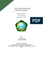 Critical Journal Review Mega Utami Uinsu Medan (Manajemen Organisasi) PDF