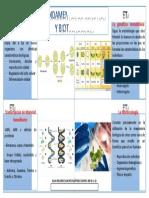 PIA-GENETICA-413.docx