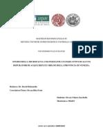 chiara zacchello - Studio della microfauna colonizzante i fanghi attivi di alcuni depuratori di acque reflue urbane della provincia di Venezia