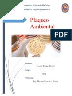 Plaqueo Ambiental.docx