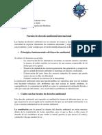 Fuentes de Derecho Ambiental Internacional