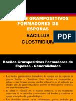 16.Bacillus_clostridium Farmacia
