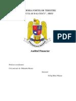 audit financiar  mitru.docx