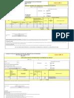 3. FormatoI y II CPR