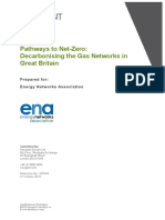 Navigant Pathways to Net-Zero.pdf