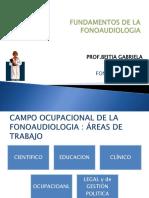 campo de la fonoaudiologia