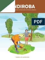 1 CE Andiroba Web