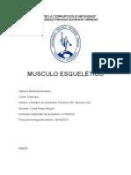 Informe de Musculo Liso