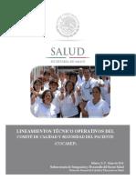 LINEAMIENTOS DEL COCASEP.pdf