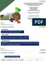 Produccion de Hortalizas Organicas CASI FINAL