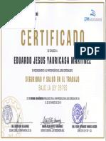 Certificado Cip Eduardo Yauricaza Sst Ica 23