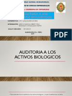 Auditoria a Los Activos-biologicos-i
