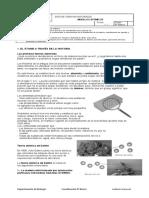 8 Biología Modelos Atómicos