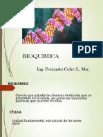 Clase 2 La Bioquimica y Su Organización de Las Células