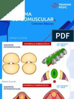 Osteomuscular Parte 1
