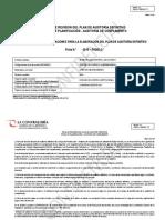 299888787-Ficha-Revision Plan de Aud
