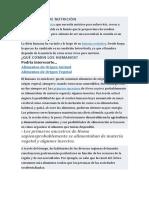 NECESIDADES DE NUTRICIÓN.docx