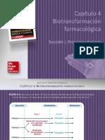 KATZUNG Farmacologia Basica y Clinica 12a c04 BIOTRANSFORMACION