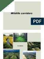 PPT Wildlife Corridors