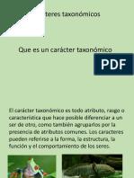 caracter taxonomico