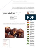 La Castaña_ Origen, Propiedades, Calorías, Vitaminas, Beneficios, y Más