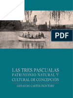 3 Pascual As