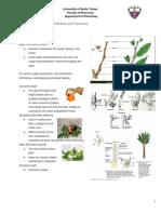 PHA611 - Unit 2 - Lesson 2 - Plant Stem