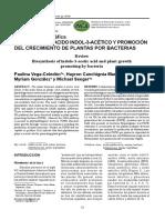 Biosisteis de Ac Indol 3 Acetico y La Promocion Del Crecimiento de Plantas Por Bacterias