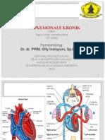 Cor Pulmonale Kronik