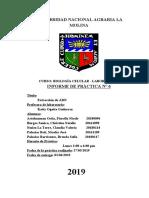 Extracción ADN BIOCEL.pdf