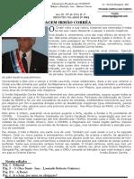 O Cinzell nº 44.pdf
