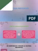 Cultura Preventiva Diaposituva.pptx [Autoguardado]