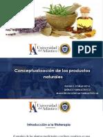 Conceptualización de Los Productos Naturales