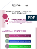 Presentasi Jaringan Saraf - Copy 2